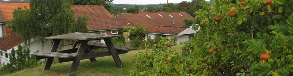Foto fra Gartnervænget