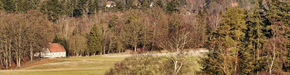 Gartnervænget set fra Langebakke